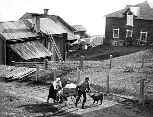 Laxviken