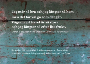 Den långa boktiteln i vit text mot en bakgrund av flagnande blå färg på en trävägg.