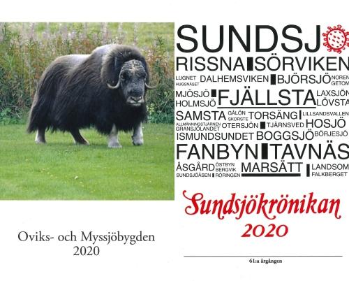 Myskoxen Brutus framför rallarrosor och en mängd ortnamn från Sundsjö socken.